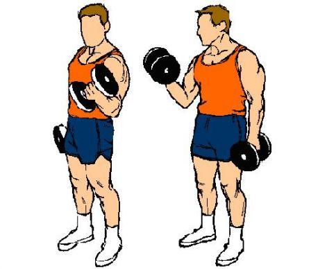 Tömegnövelő tricepsz gyakorlatok